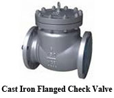Cast Iron Flanged Check Valve